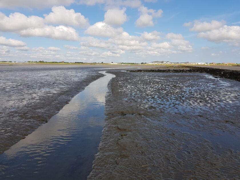Ein Pril in der Nordsee
