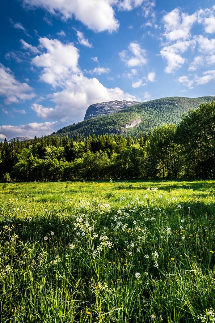 Norwegens schöne Landschaft